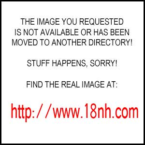 marcella karolina sapphic erotica 8282 MatureWomanOrig..> 23 Apr 2010 15:27 96K ...